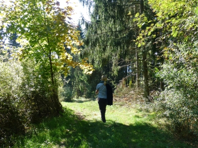 Kahlenweg (M1) Medebach