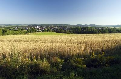 Kuckucksuhlenweg (M3) Medebach