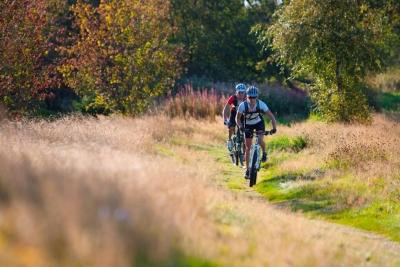 Zum Galgenberg (Tour 9) - Bike Arena Sauerland