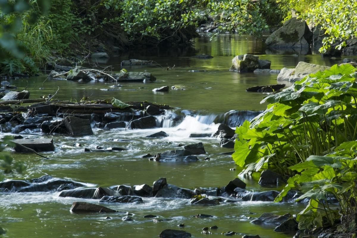 Fluss Orke Medebach-Medelon - Bildrechte Sauerland Wanderdörfer Klaus Peter Kappest